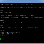 DNS records using DIG